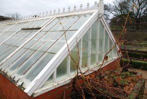 Victorian Wooden Greenhouse Devon Before Rebuilding From Scratch